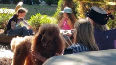 napa-neighborhood-music-fest-2016-07-31-068