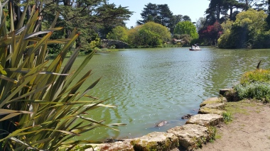 Stow Lake in GGP, SF 2017-03-30 023